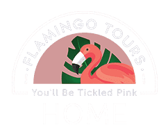 Flamingo Tours | Logo